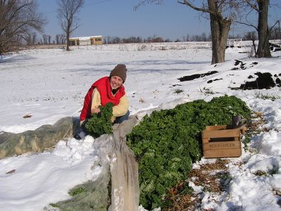 Adrienne harvesting kale in the winter of 2005.