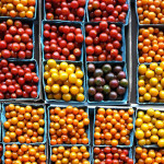 Cherry tomatoes in pints on Red Wiggler Community Farm.