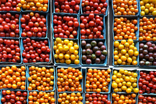 A cart of Cherry tomatoes from Red Wiggler Community Farm.