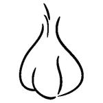 garlic-01-01
