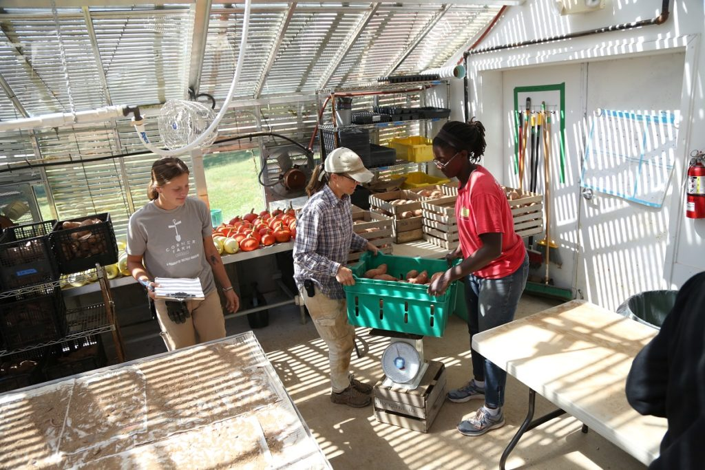 Liza (left) with Staff members Melissa and Darlene weighing produce.