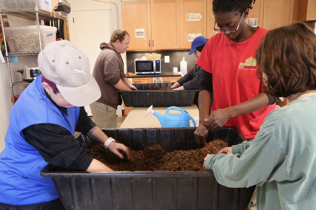Preparing soil for seeding by breaking up clumps of soil and adding water to condition it